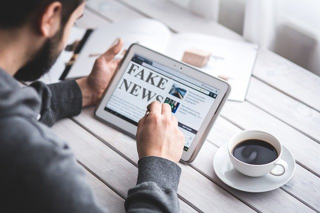 Embracing the Idea of Unregulated Fake News